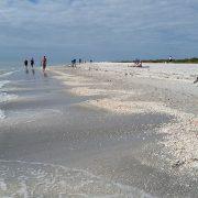 Mindstage Beach Image